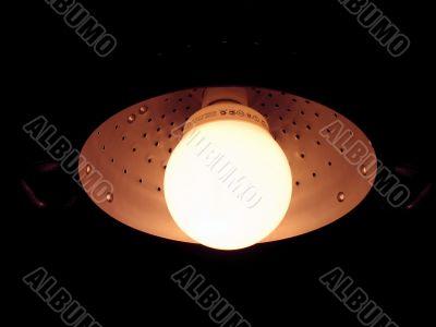 magenta fluo lamp