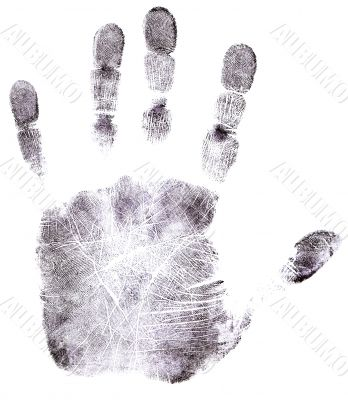 Full Hand Black Fingerprint