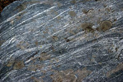 Lichen & moss on striated boulder