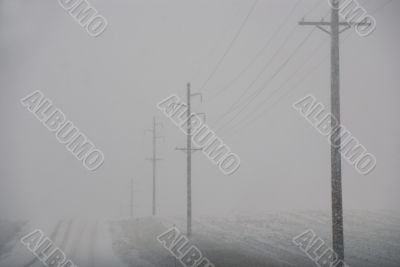 Telephone poles on road to nowhere