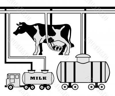 Manufacture of milk