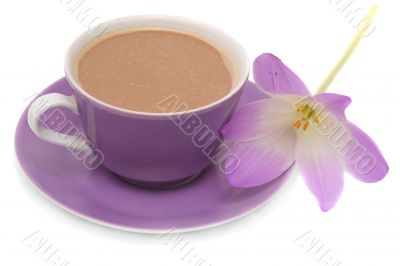 The lilac flower and cup from coffee