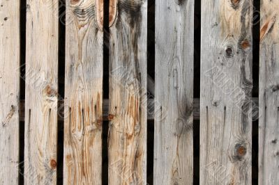 Colorful natural wooden planks