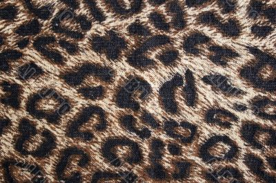 Leopard spotted fabric background