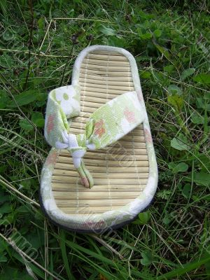 Summer Flip-flops isolated on green herb