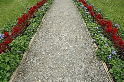 Gravel path surrounded by flowers