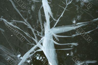 Bizarre cracked ice