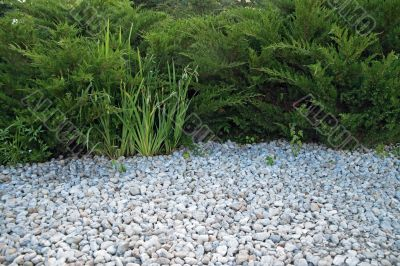 White pebble and green bushes