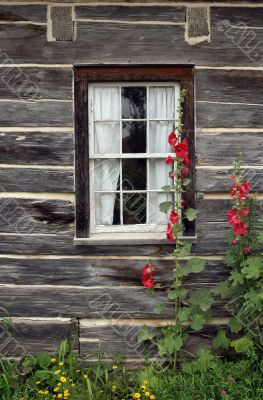 Window of a wooden country house