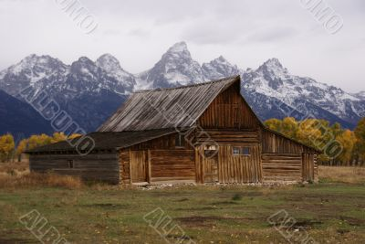 Autumn, Grand Tetons and old western farm