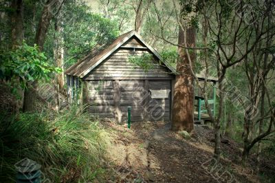 Old Log Cabin 1