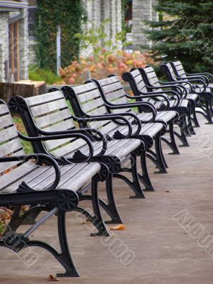 Row of benches in the autumn