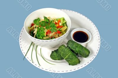 Asian Cabbage Rolls Meal