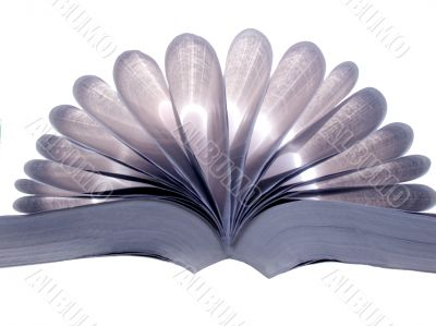 Pages of open book