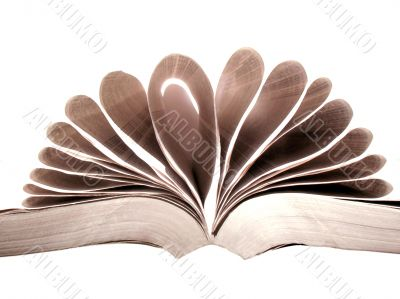 Open book with pages in formation and on white