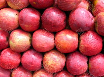 Red apples stacked for show