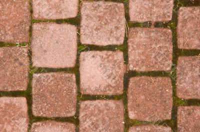 Squared pavement tiles
