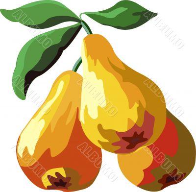 Juicy appetizing mature yellow pears