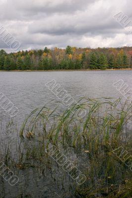 Moody fall scenic
