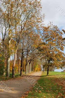 Path in automn