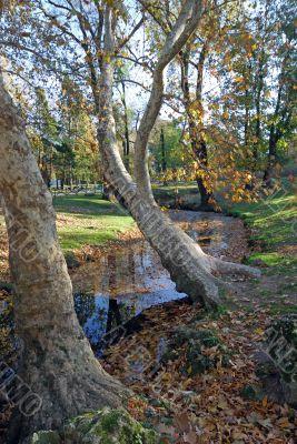 Milan - Sempione Park in november