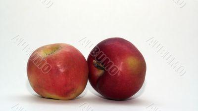 fine apple apples