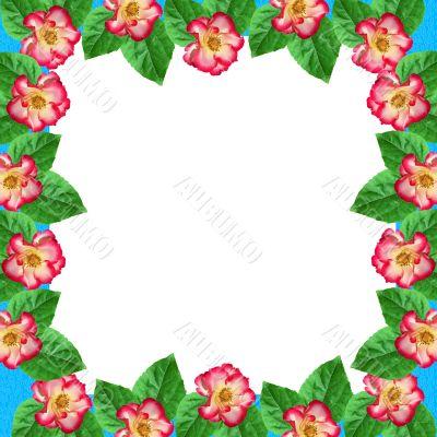 Framework from roses