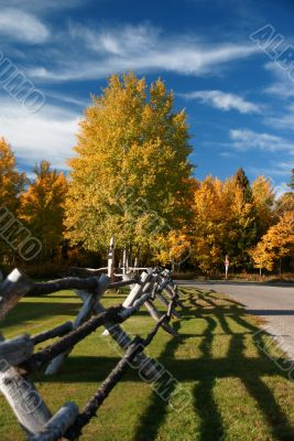 Autumn road and rail fence