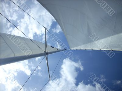 Sail In Blue Sky