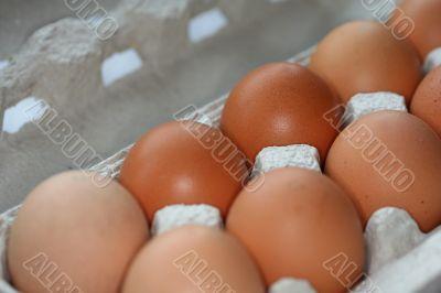 ten eggs in a carton