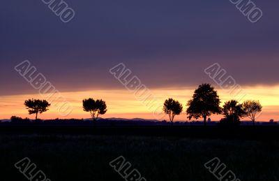Marchfeld Sunset