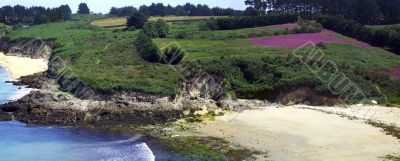 Small creek of sand in Brittany in spring