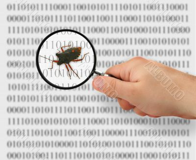 concept of searching for a bug