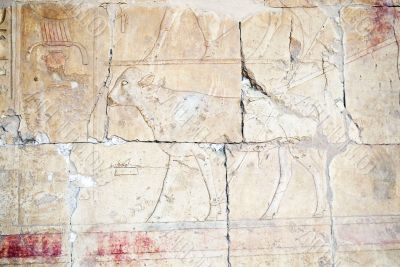 Egyptian Hieroglyphs in the temple of Hutshapsud