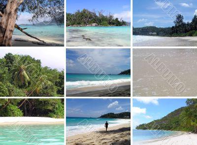 Tropical installation. Seychelles.