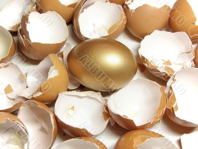gold and eggshell