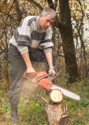 wood-cutter
