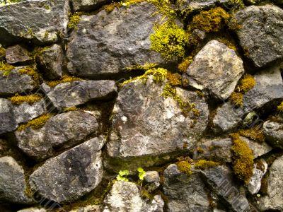 Old Rock Wall