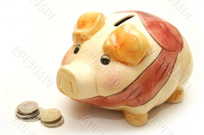 Piggy Bank Next to Coins