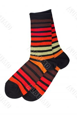 Pair of colorful socks