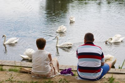 Woman, man and swans on river