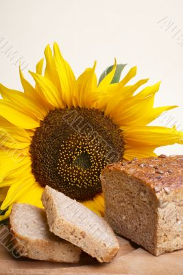 Brown bread with sunflower