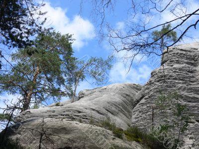 Rocks and trees - polish landscape