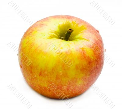 Apple with white background 4