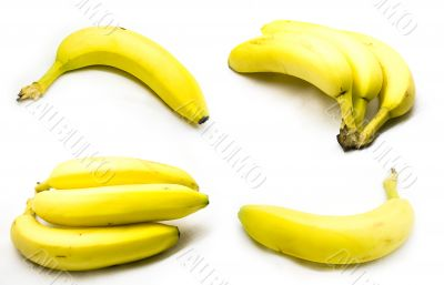Bananas - union plate