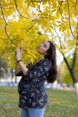 Pregnant woman in autumn park hold the limb