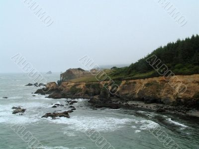 West Coast Ocean Vista