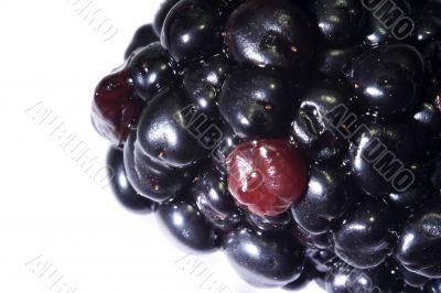Macro close-up of blackberry 3