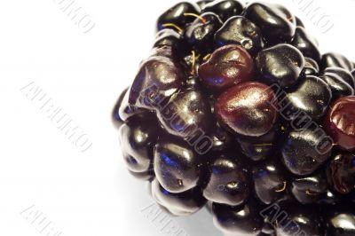 Macro close-up of blackberry 2