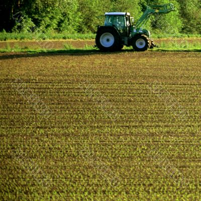 Tractor on a field